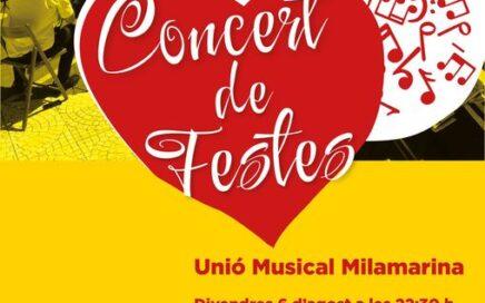 cartel concert festes excelent